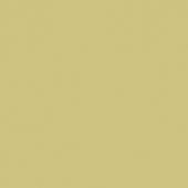Color One WAA19221