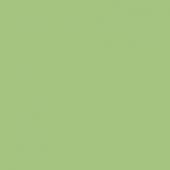 Color One WAA19465