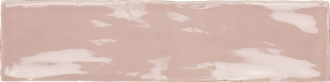 19806 Poitiers Rose/30