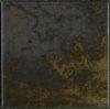 Antares 10N