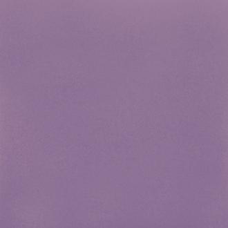 Астерия лиловый КГ 01
