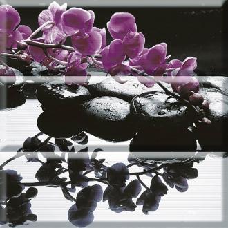 Aure Composicion Wellness Purple