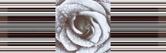 Aure Decor Rose 02