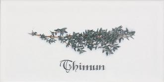 Biselado Decor Thinum Blanco