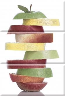 Composition Fruit Mosaic