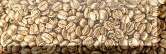 Decor Coffee Beans 02