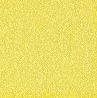 Flexi B Yellow Mat