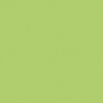 Greencolors Lime 20