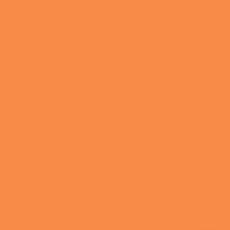 Калейдоскоп рыжий 5187