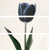 Ligne Decor Set Tulipan Negro