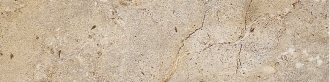 Livingston Taupe Battiscopa