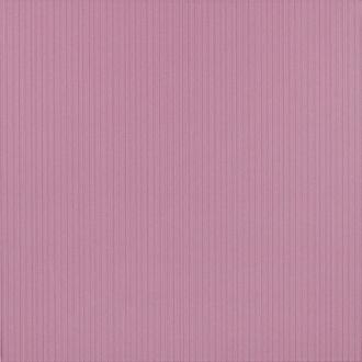Maxima Purple