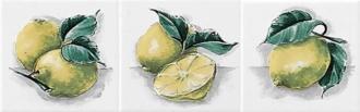 Neopolis Bianco Lucido Limoni ABC