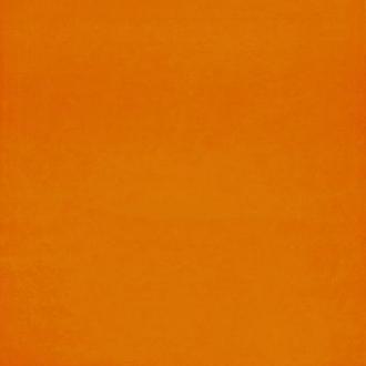 Orange GM