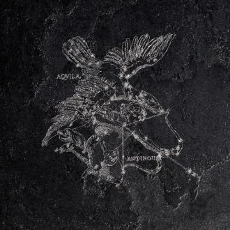Pietra Lavica Decoro Aquila Gryphea
