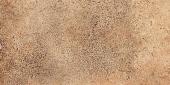 Terrae de Tarsina Broccaro 5BFC113