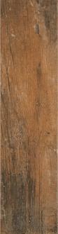 Timber Golden Saddle