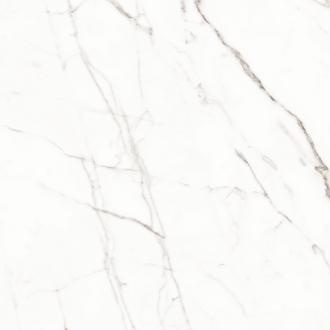 White 2m60/LR